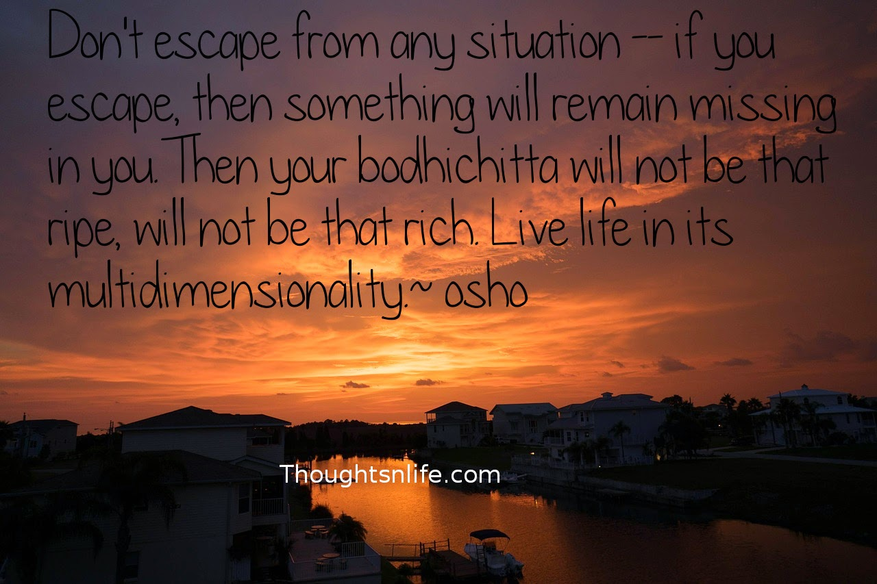 Don't escape from any situation~osho #oshoquotes #wisdom #spiritualquotes