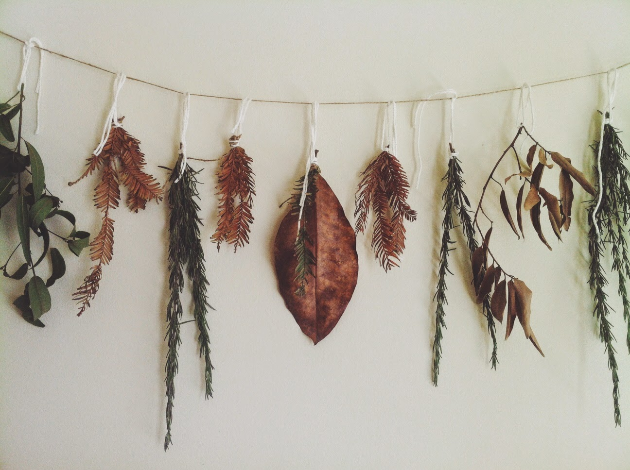 eco-friendly lifestyle, DIY decoration of nature fragments, dry herbs, TLV Birdie blog, instagram blogging tips, decor in kinfolk style, fall decoration