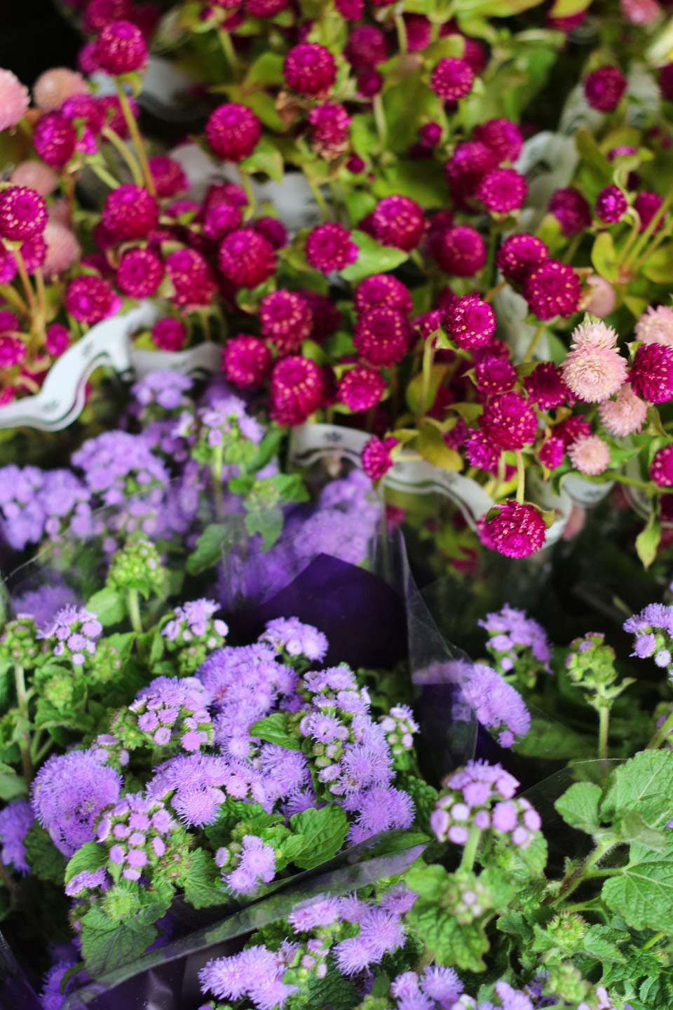 cut flowers If your fruit and veg are seasonal and local, your flowers should be, too all you need, louise curley says, is a little patch of garden.
