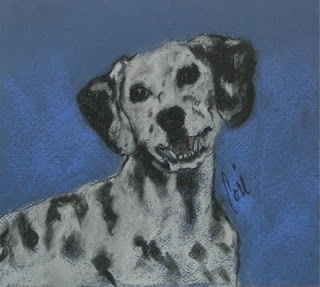 Dalmatian Dog Art By Cori Solomon