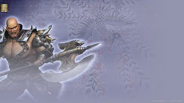 #13 Dynasty Warriors Wallpaper