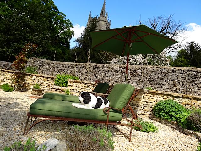 #castlecombe #castle comb # england #best village #kingcharles #englishdog #britishgarden