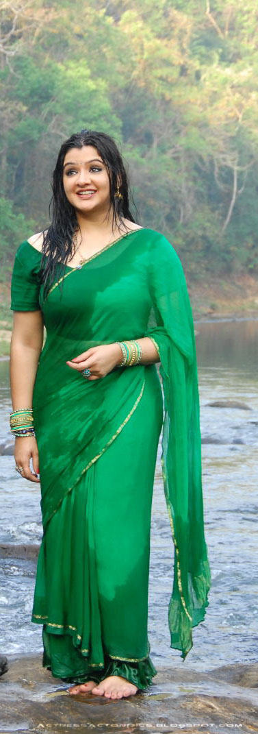 Aarthi Agarwal Green Saree Photos