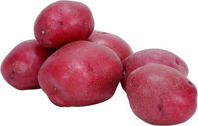 Different Colors of Potatoes - Red Potatoes