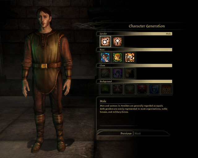 Dragon Age Origins Character Generations
