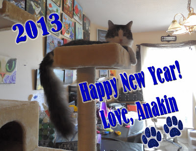 Happy New Year! Love Anakin The Two Legged Cat