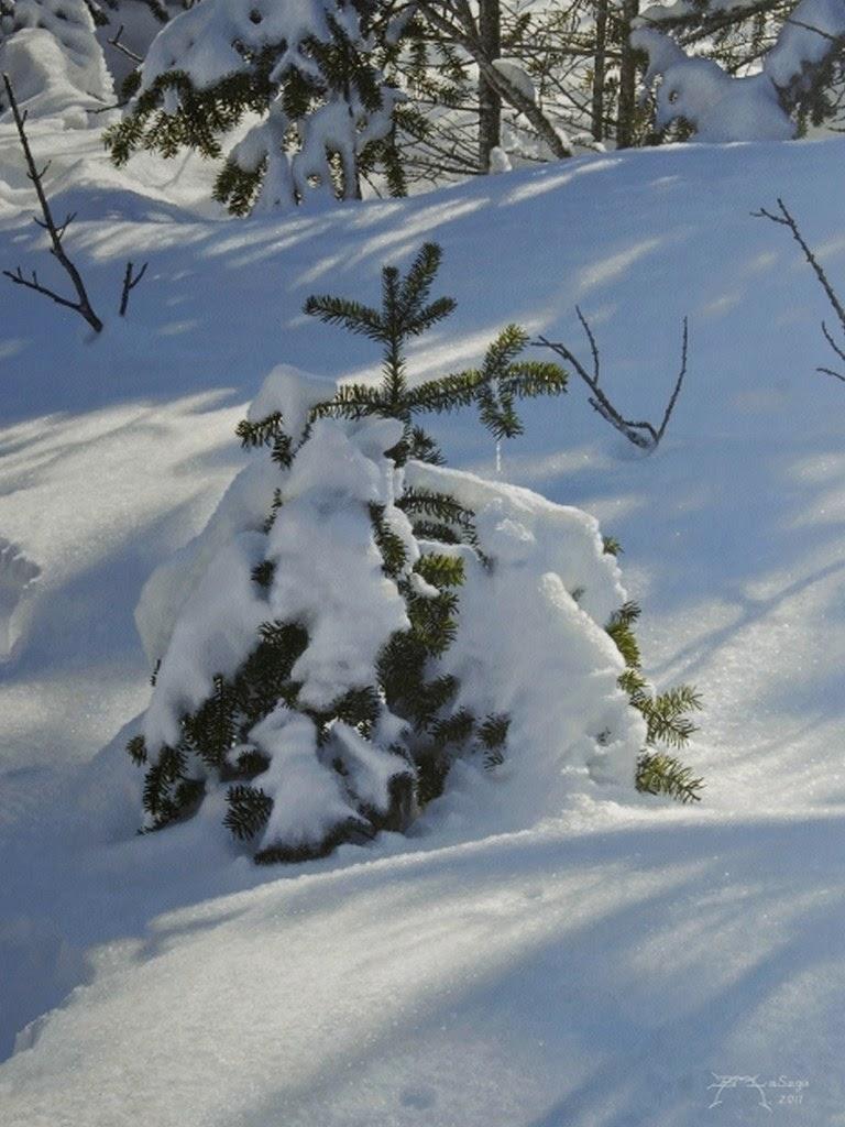 paisajes-nevando-en-pintura-hiperrealista