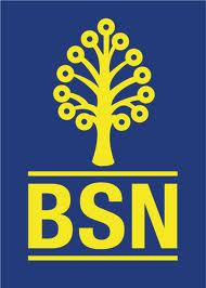 Bank Simpanan Nasional (BSN)