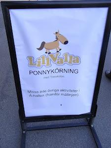 För DANSHÖGSKOLAN/STOCKHOLM 2011