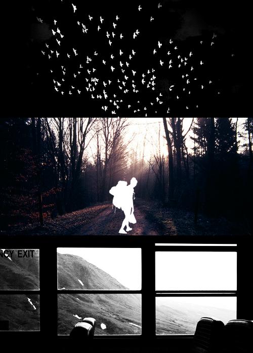 thefivewaves.tumblr.com