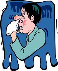Tips Mengatasi Dan Mengobati Flu Secara Alami ~ Tradisional