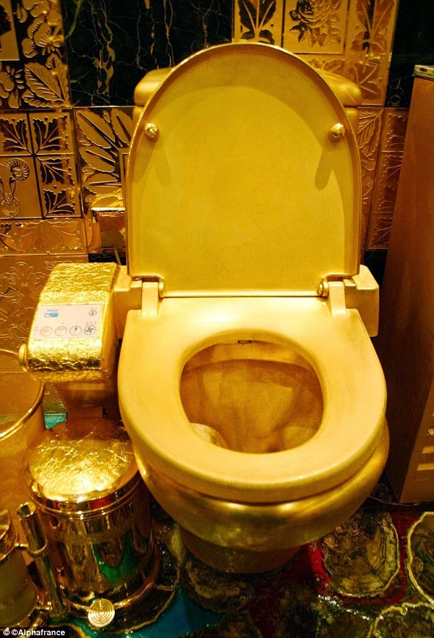 It is a golden opportunity to have a toilet