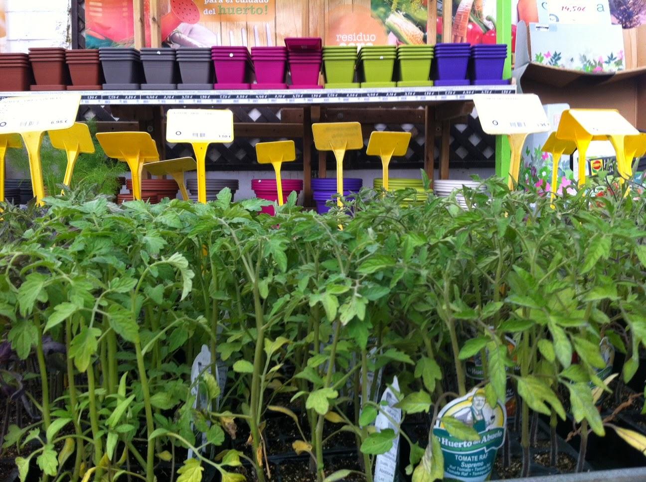 Garden Sopelana Mundo Verde Jardinarium Tomates ~ Como Cultivar Tomates En El Huerto