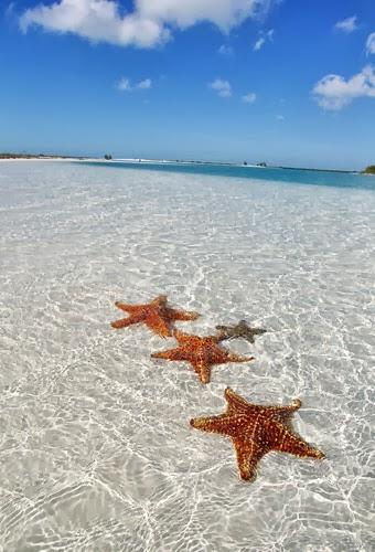 Naturisme vakantie tips: Naturisme op Cuba