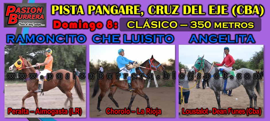 CDE 8 - CLASICO