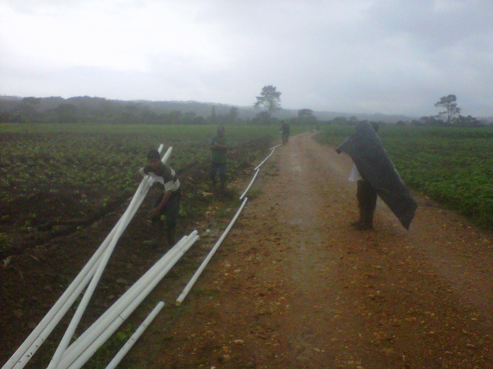 Bombas y riegos de guatemala sistema de riego por goteo y - Sistema de riego por goteo automatizado ...