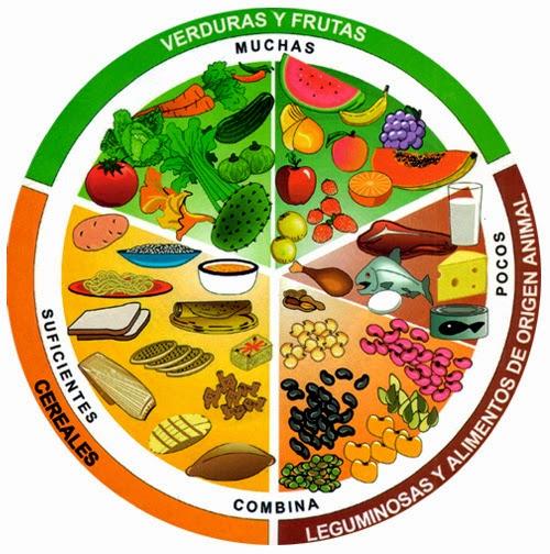 Tratamiento y prevención de la Obesidad