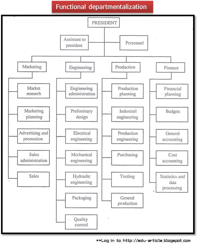 organization structure what is functional departmentalization essay Read this essay on organizational structure   some argue that functional departmentalization  organizational structure organization structure refers.