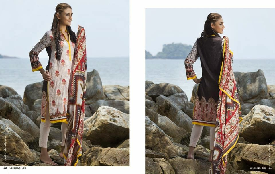 Anaya Summer Embroidered 2015 Lawn Collection