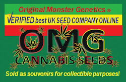 OMG UK Seeds Breeder Original Monster Genetics