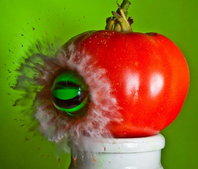 Tomato Dive