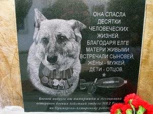 Actos heróicos protagonizados por perros