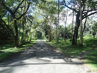 Casaroro Falls