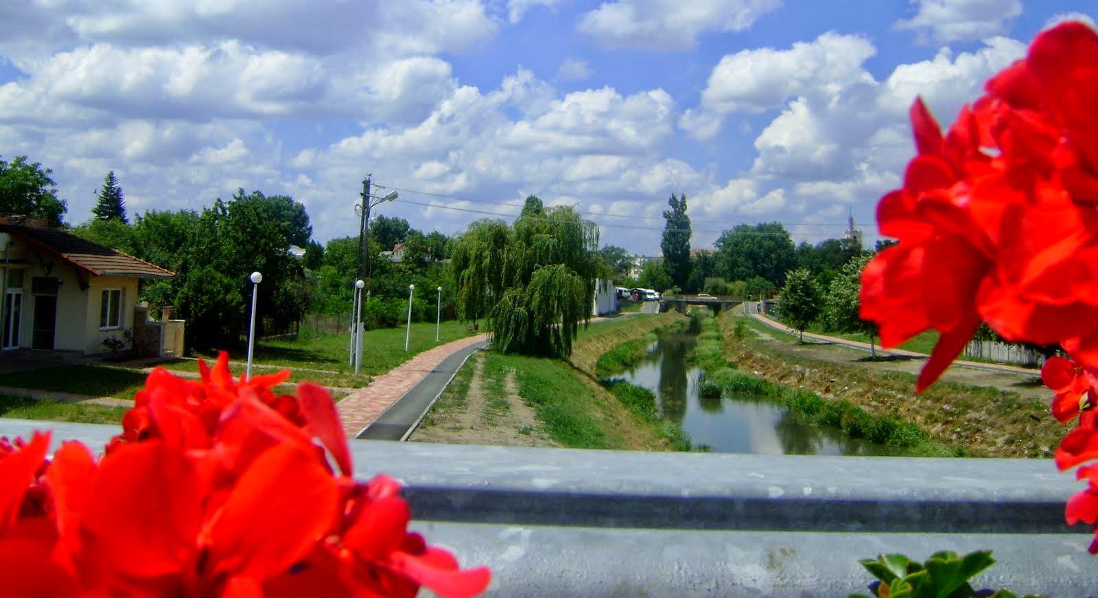 Canalul Aranca