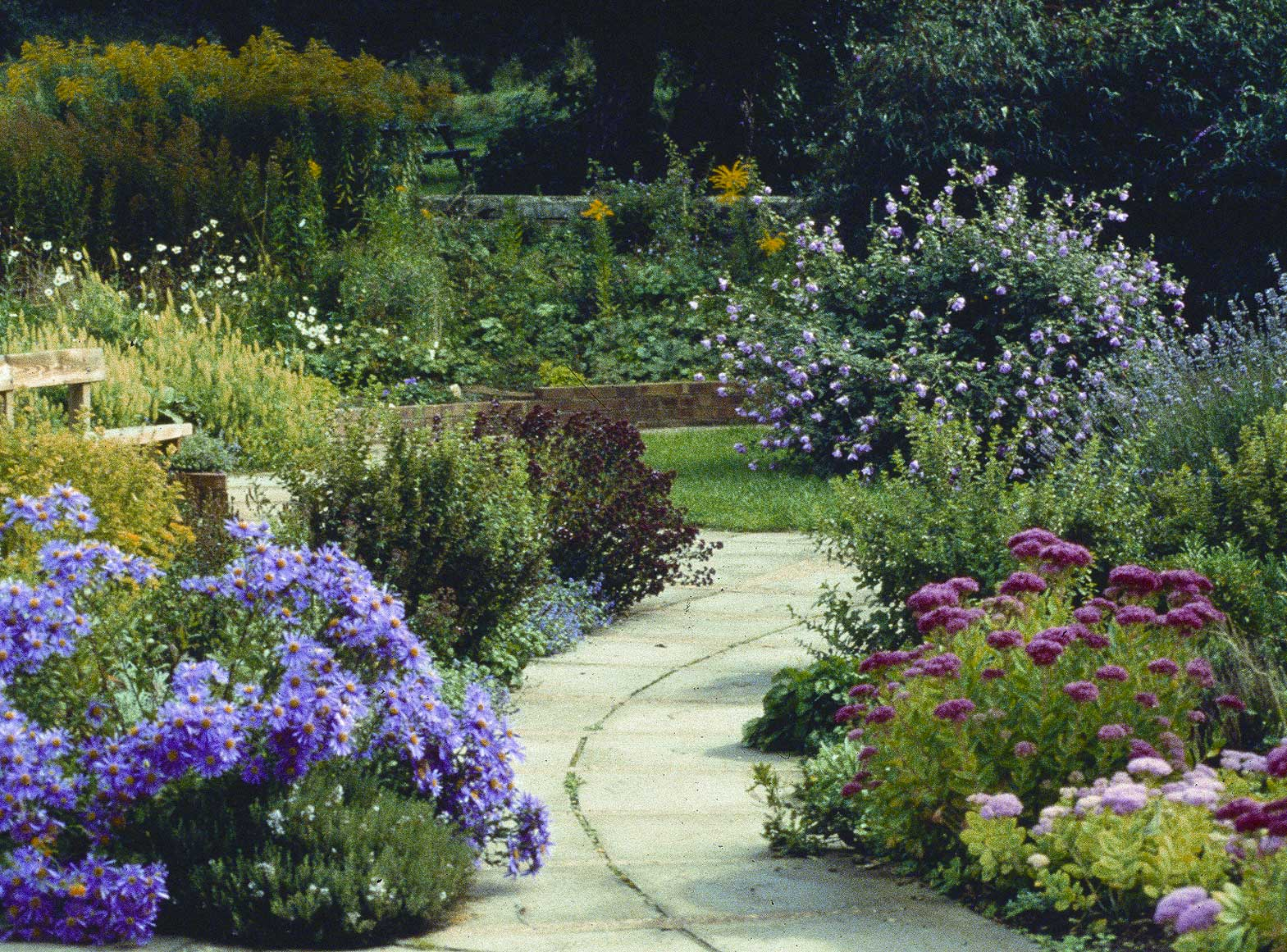 Small butterfly garden ideas photograph sunday 17 februar for Butterfly garden designs free
