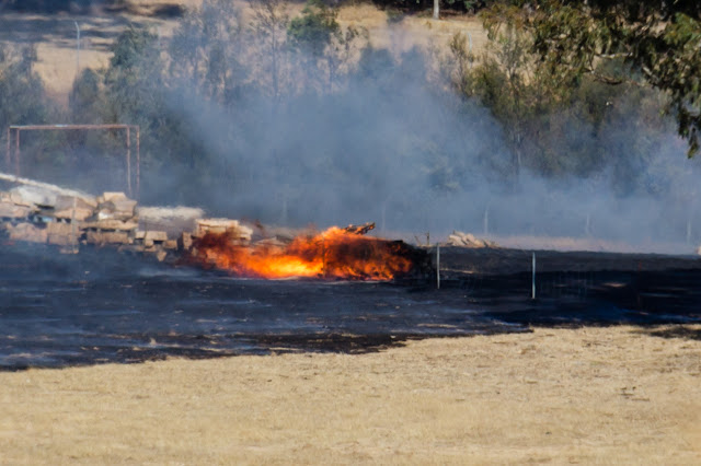 grass fire in paddock