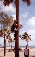 Colonel Bob climbing palm tree beachbootcamp.net