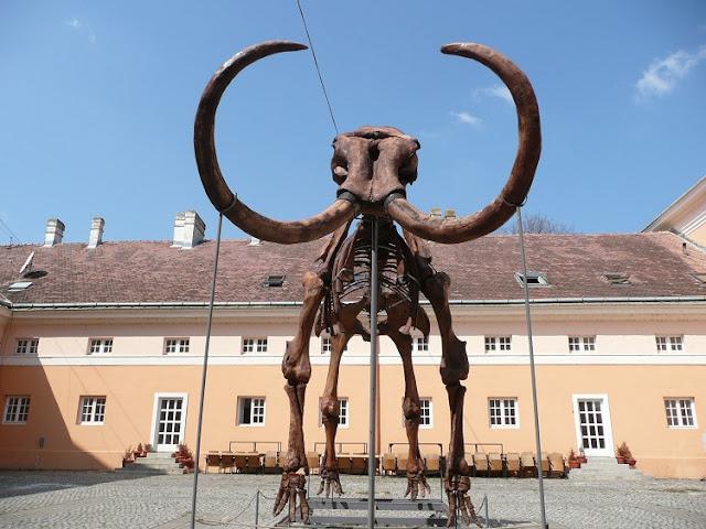 Kika il Mammut di Kikinda