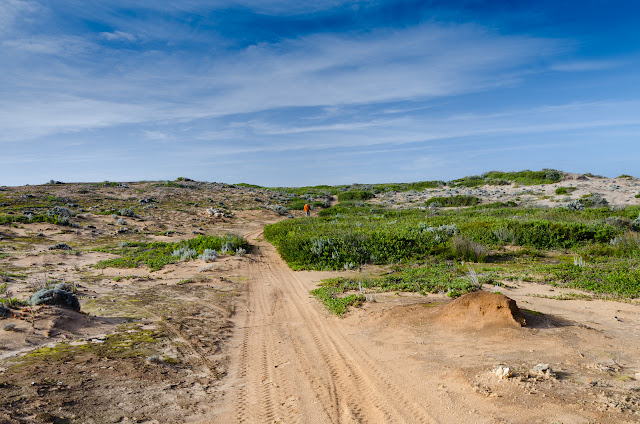 inland sandy track