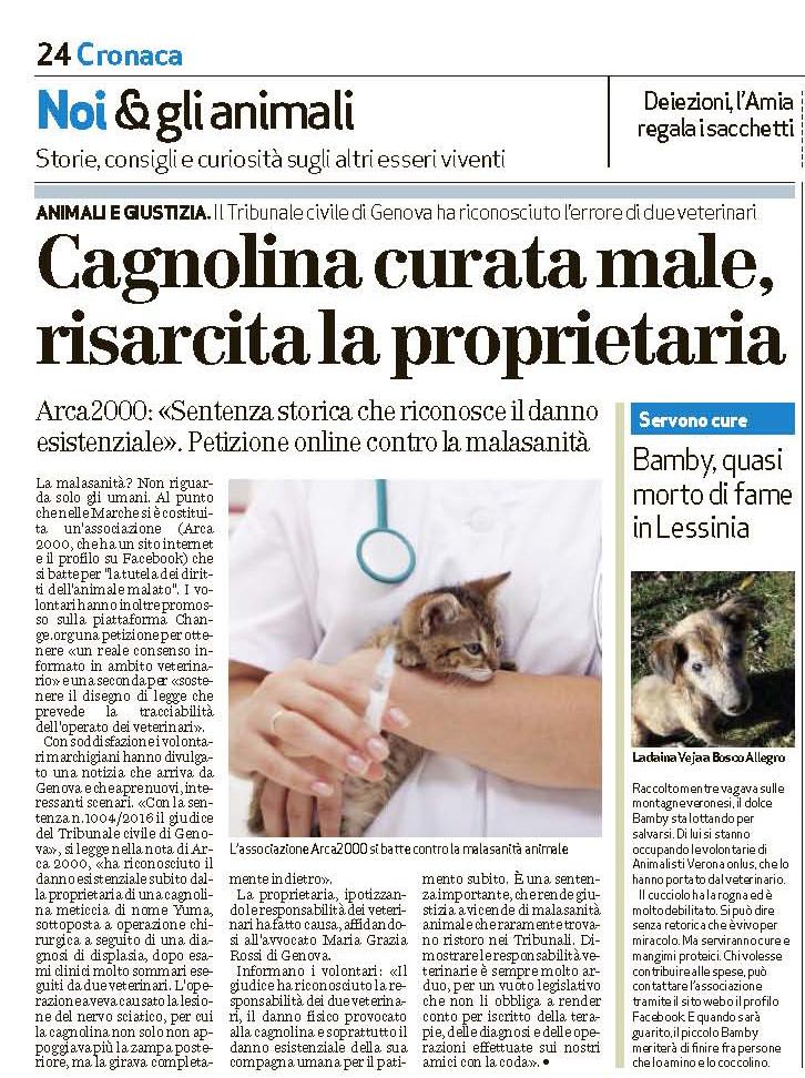 risarcita vittima di malasanità animale