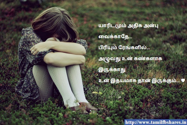 Boy Feelings Quotes Boy Feelings Quotes