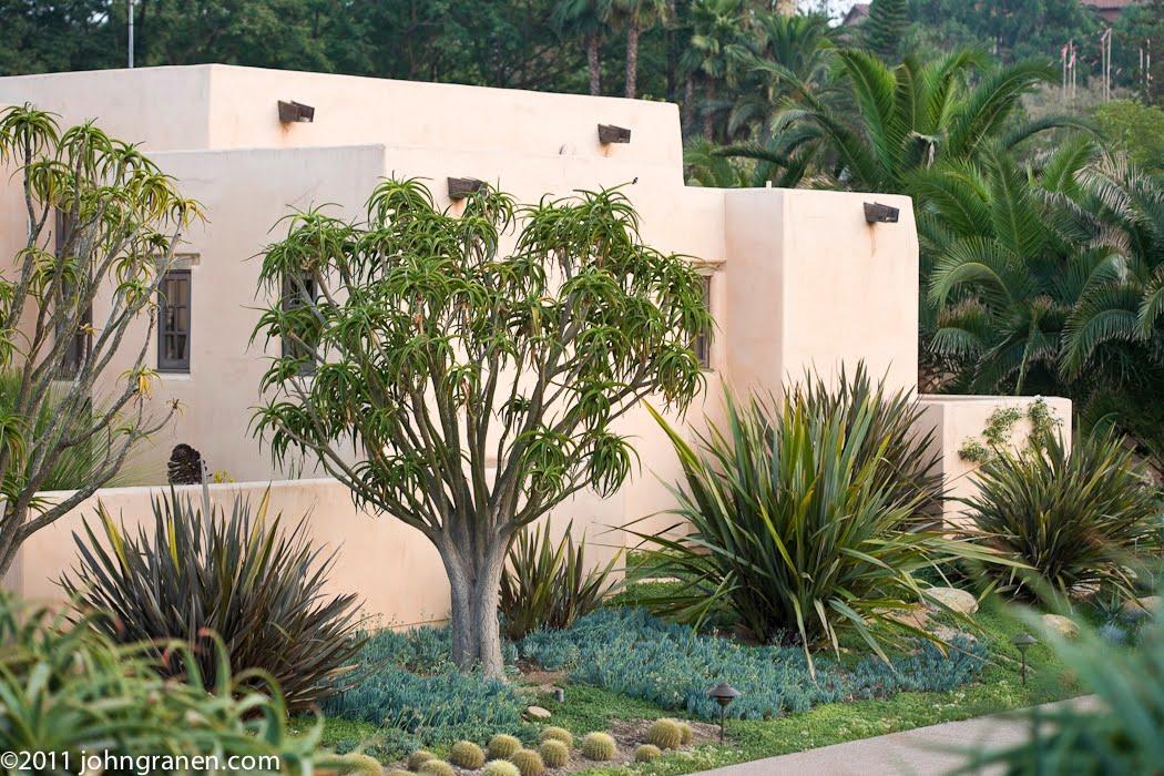 Interior Architectural Photography Southern California Garden