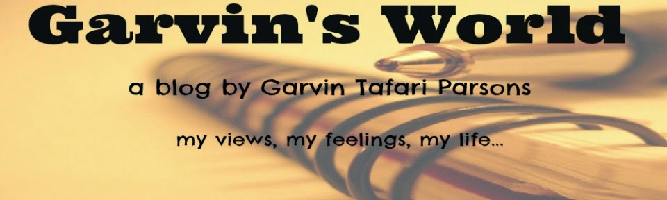 Garvin's World