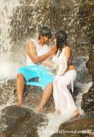 HariPriya Hot White Saree Photos