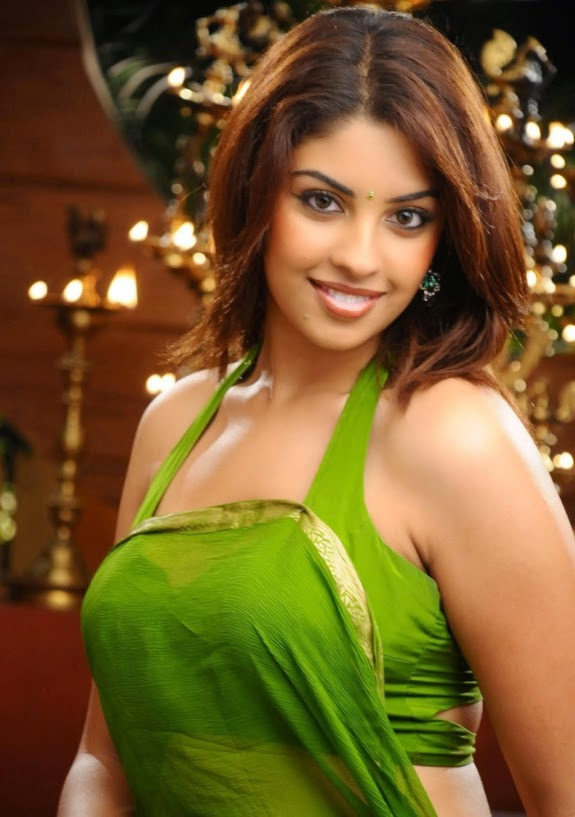 richa gangopadhyay hot pics in her green blouse latest 2014 pics
