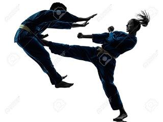 Puissance martiale