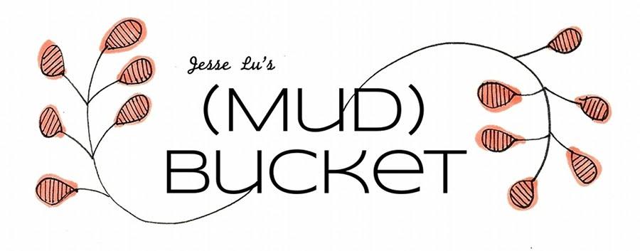 (Mud)Bucket