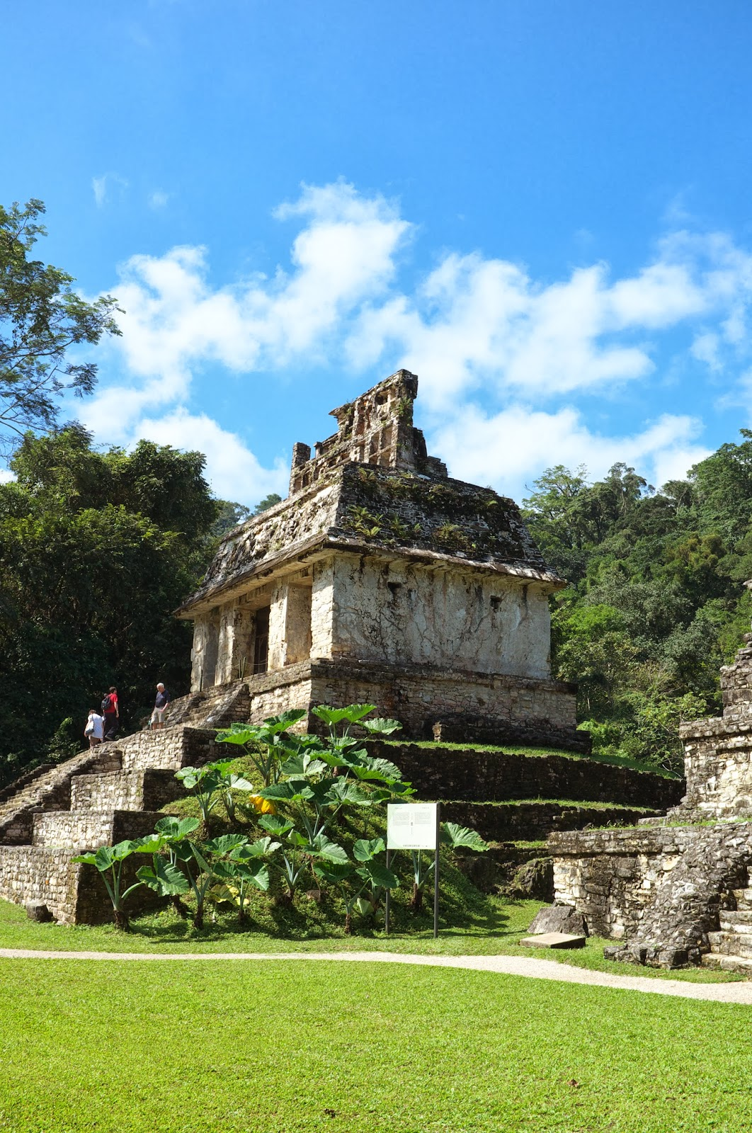 how to get to palenque ruins
