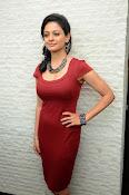 Pooja kumar new glam pics-thumbnail-12