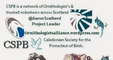CSPB Ornithologists Alliance