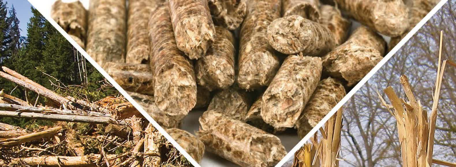 Enter the global wood pellet market