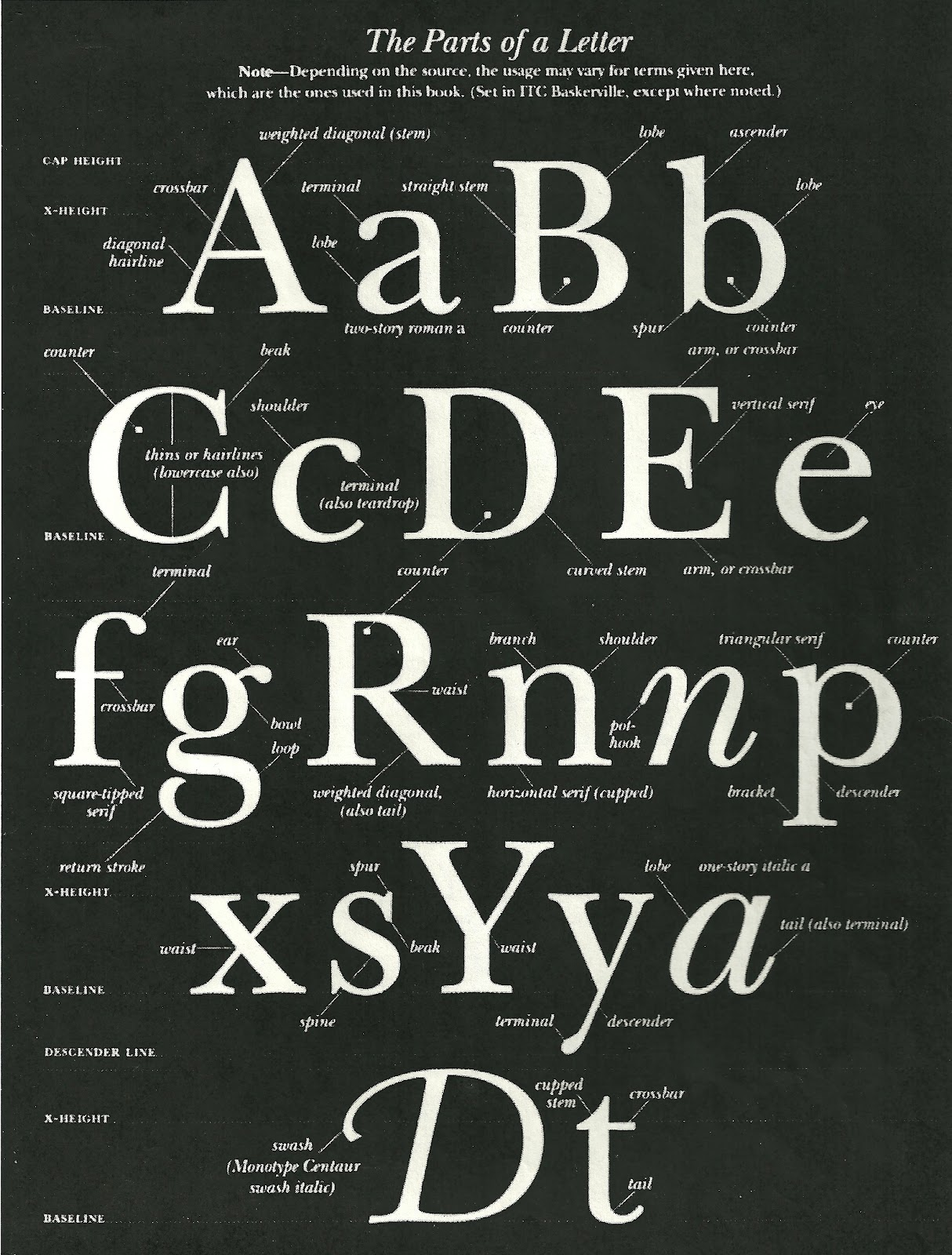 Navarrodesigns: Anatomy of a Letterform