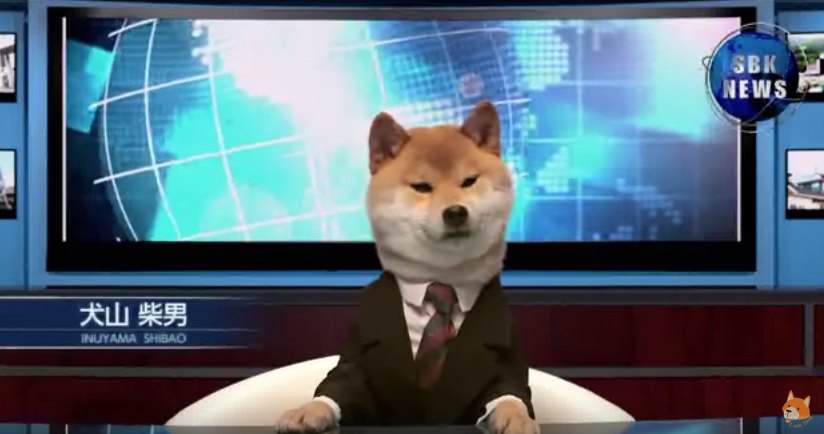 Video: Strange Japanese News Anchored by Dog. Watch this Funny ...