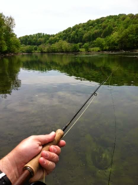 Fly fish east tennessee april 2014 for Clinch river fishing