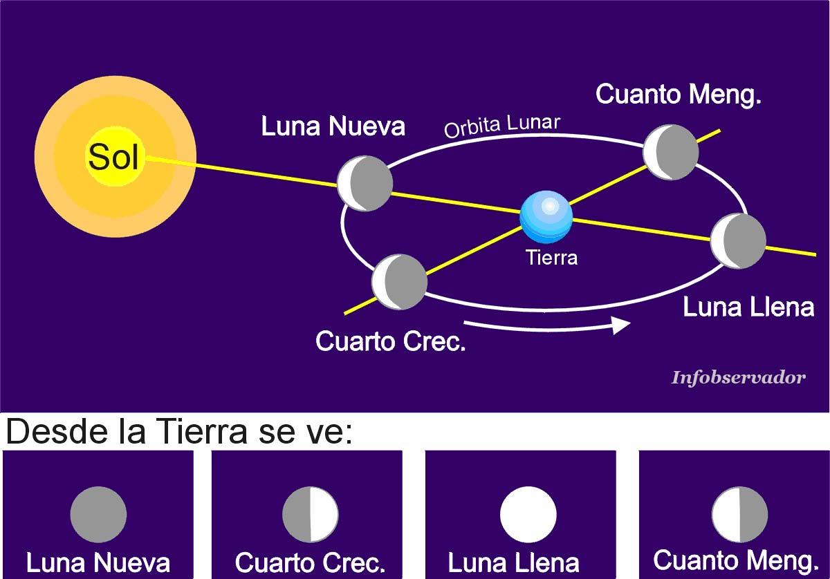 LA FASE CRECIENTE Y MENGUANTE DE LA LUNA - Astrología y Predicciones