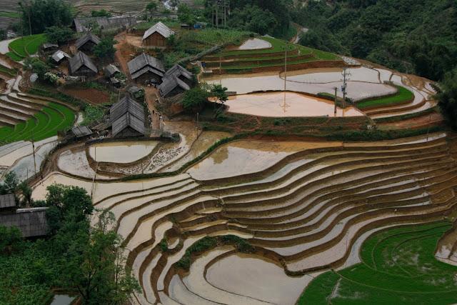 Terrazas de arroz de pueblos étnicos junto a Sapa.